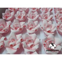 Rosas Cor de Rosa Nº3 Cx.35