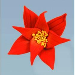 Flores Natalicias Açucar Cx.15