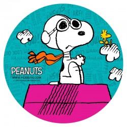 Hostia Snoopy 20cm