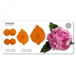 Cortadores Flores Hydrangea