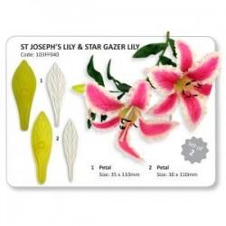 PME - JEM ST. JOSEPH´S LILY & STAR GAZER