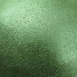 Corante Alimentar em Pó com Brilho Starlight Galactic Green