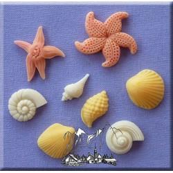 Molde Silicone Conchas e Estrelas do Mar