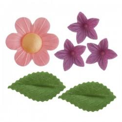 Flores e Folhas Hóstia