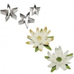 Cortantes Inox Rose Calyx & Poinsettia's PME