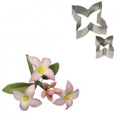 Cortante inox Flor Daphne Cj.2 PME
