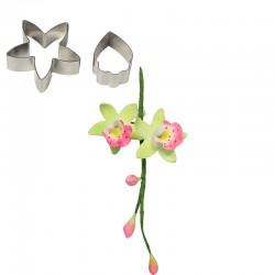 Cortante Inox Orquídea Cymbidium